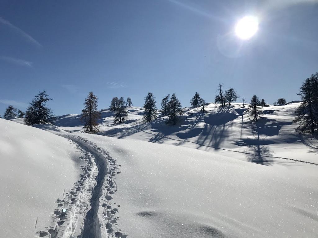 Pas à Pas sur les traces hivernales Puy-Saint-Vincent